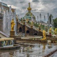 После дождя в Петродворце :: Valentina - M