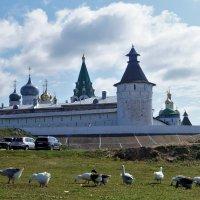Макарьево. У стен монастыря :: Gal` ka