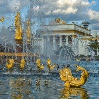 Золотая Рыбка :: юрий поляков