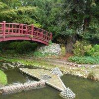 японский сад :: Sabina