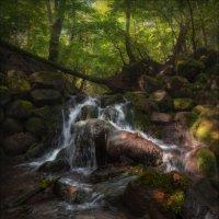 И ранней осени прохладные ручьи .. :: Влад Соколовский