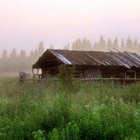 Туманный вечер в Лёвкинской :: Галина Ильясова