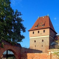Верхний замок Мальборка :: Сергей Карачин