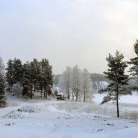 Зимний пейзаж :: Vyacheslav Gordeev