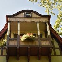 house :: Jerzy Hermanowicz