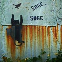 Случай на охоте :: dana smirnova