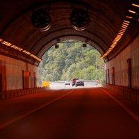 Тунель по дороге с Красной поляны в Сочи. :: Алексей Golovchenko