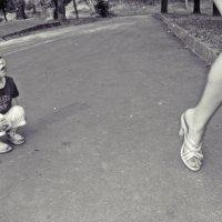 Какие ножки!!! :: Андрей Самуйлов