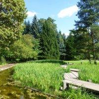 Японский сад :: Лидия Бусурина