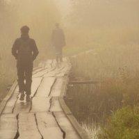 в тумане... :: леонид логинов