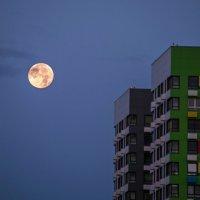 Око полной луны заглянуло в окно... :: Валерий Иванович