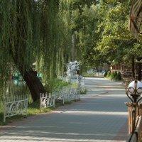 Парк отдыхает. :: barsuk lesnoi