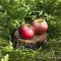 Два яблочка :: Ольга Бекетова