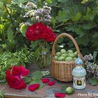 Крыжовник и розы :: Ольга Бекетова