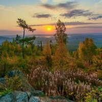 Осеннее буйство красок :: Vladimbormotov