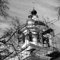 Николо-Берлюковский монастырь :: Любовь
