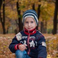 Осень хорошая пора :: Александр Бирюков