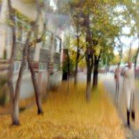 Осенний пейзаж. :: Эника.