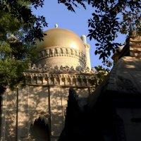 Старый парк в Кабардинке :: Юрий Гайворонский