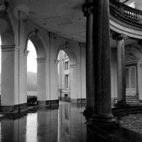 Дождливый день... :: Elena Ророva