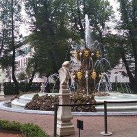 Летний сад, фонтан :: Алексей Чумаков