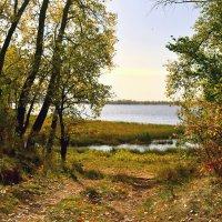 Осень на реке. :: Анатолий