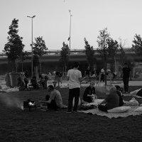 Отдых на траве ... :: Лариса Корж