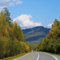 Дорога в осень :: Зинаида Каширина