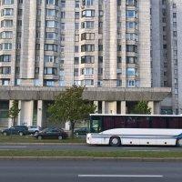 Автобус :: Митя Дмитрий Митя
