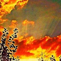 Светопотоки закатного неба.. :: Евгений БРИГ и невич