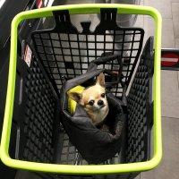 Однажды в супермаркете. :: Sergii Ruban