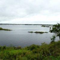 Наводнение :: Николай Сапегин