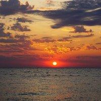 Восход солнца :: Сергей Беляев
