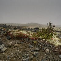 Сентябрь в Хибинах :: Андрей Протуренко