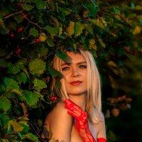 На закате :: Ольга Нежикова