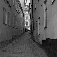 Стокгольм в моем сердце❤ (ч/б серия фото) :: Swetlana V