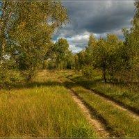 Осень, осень, осень... :: Андрей Дворников