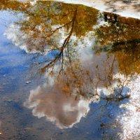 Осенние отражения... :: Андрей Головкин