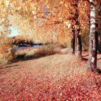 Magical autumn... :: Андрей Головкин