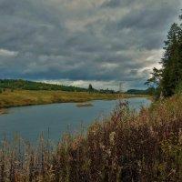 Пасмурный день на Мологе реке... :: Sergey Gordoff
