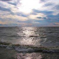 Балтика :: Самохвалова Зинаида