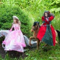Принцессы на лошадях :: Ольга Бекетова