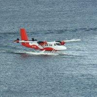 Посадка гидросамолёта :: Natalia Harries