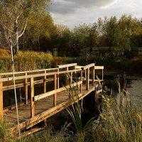Место для рыбалки. :: Татьяна Помогалова