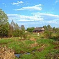 Сельский пейзажик :: Марина