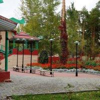 Восточный стиль среди сосен и берез... :: Зинаида Каширина