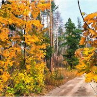 Осенняя дорога :: Виктор Марченко