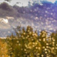 Осенний дождик :: Владимир Буравкин