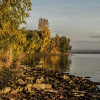 осеннее утро на озере :: Dmitry Ozersky