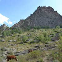 Покой и тишина великих гор Баяна... :: Андрей Хлопонин